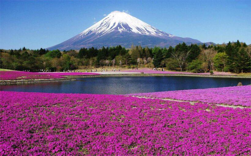 Hình ảnh núi Phú Sĩ Nhật Bản