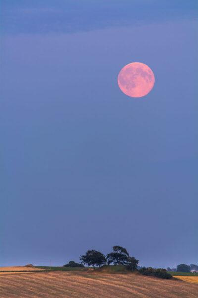hình ảnh siêu trăng màu đỏ