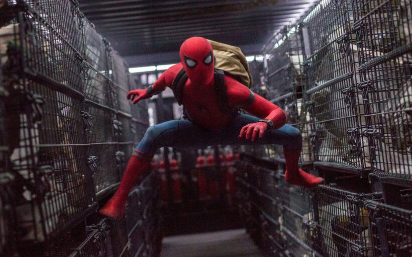 Hình ảnh Spider Man cực đẹp