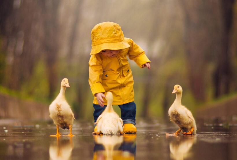hình ảnh trẻ em cùng động vật