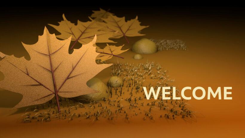 Hình ảnh Welcome đẹp, cực ấn tượng