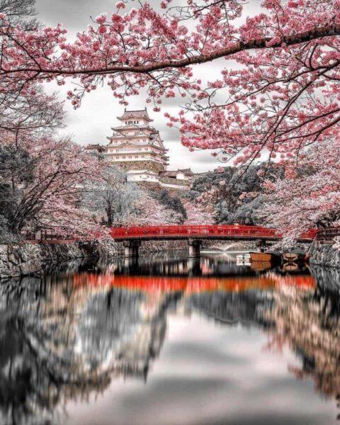 Hình nền Nhật Bản