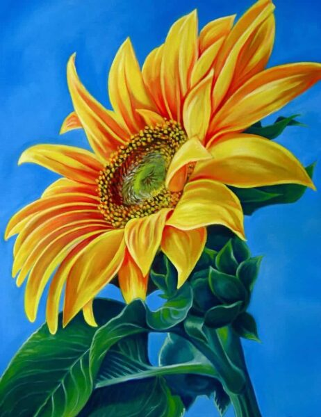 Hình vẽ bông hoa Hướng Dương đẹp rực rỡ