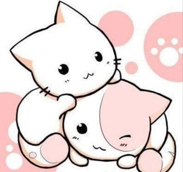 Hình vẽ mèo anime chibi