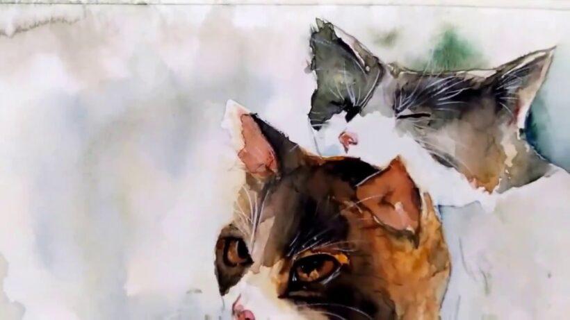 Hình vẽ những con mèo bằng màu nước