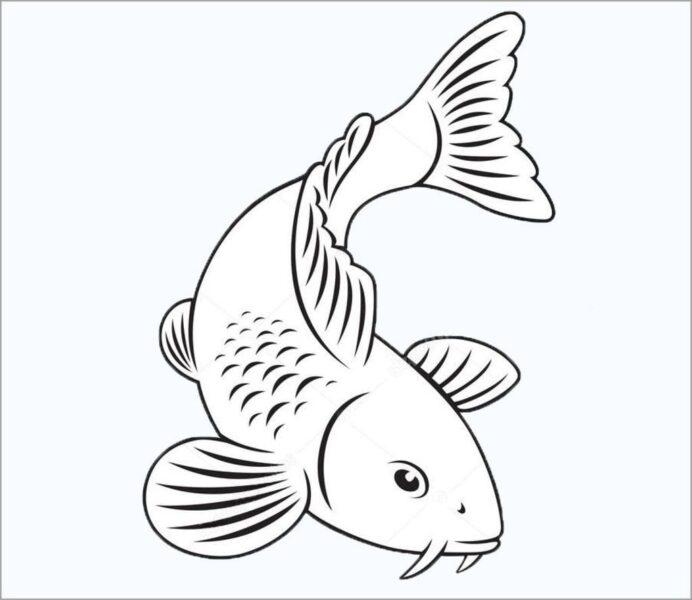Hình vẽ tô màu Cá Chép