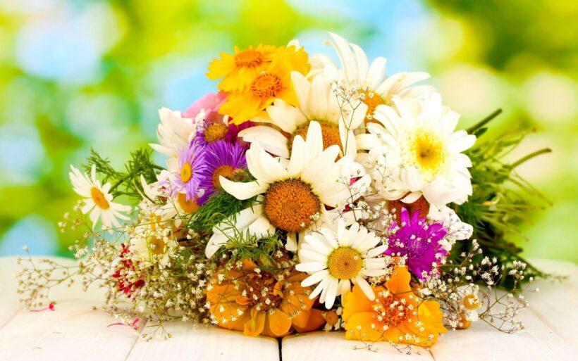 Mẫu hoa để bàn cực đẹp