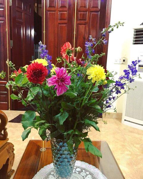 Mẫu hoa để bàn đẹp cho ngày tết