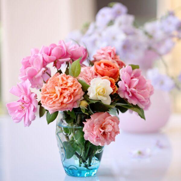 Mẫu hoa hồng để bàn tuyệt đẹp