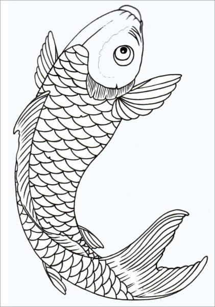 Tranh vẽ Con Cá Chép cho bé tô màu