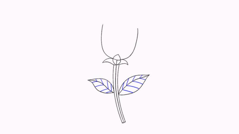 Vẽ bổ sung chi tiết cuống hoa và lá ở hai bên
