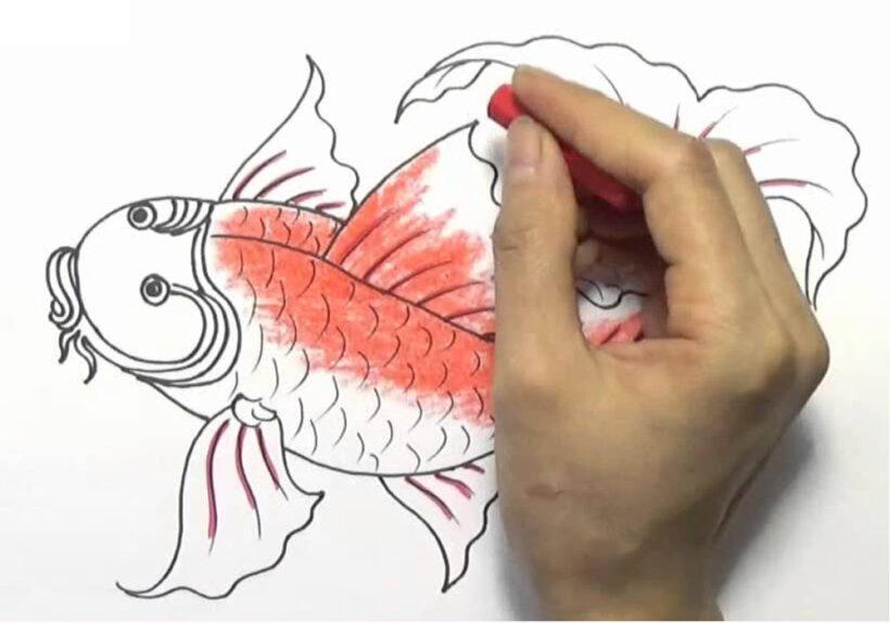 Vẽ Cá Chép bằng bút sáp