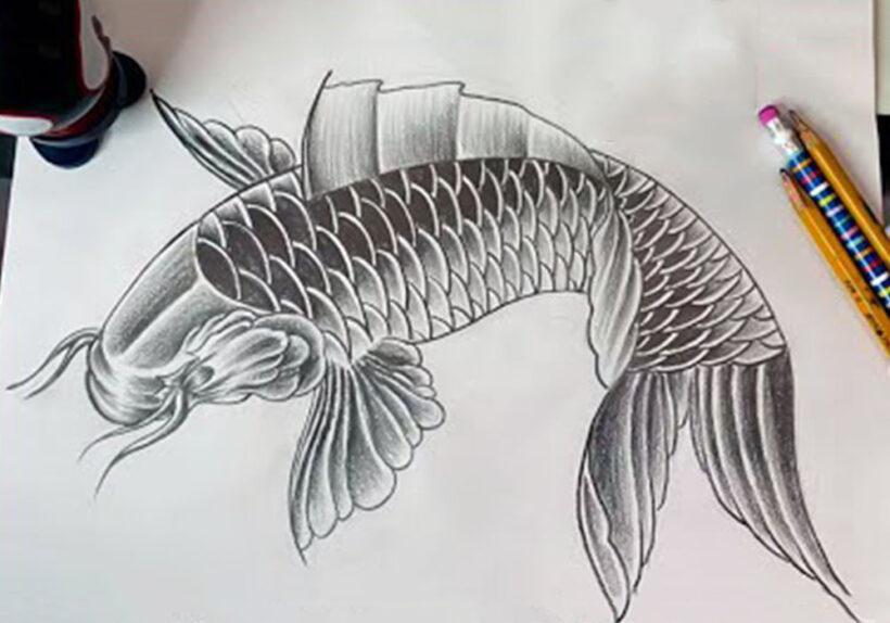 Vẽ Cá Chép đẹp