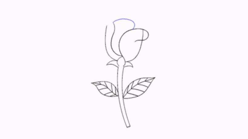 Vẽ các nét cong kiểu hình chữ C từ nhuỵ lên trên để tạo cánh hoa