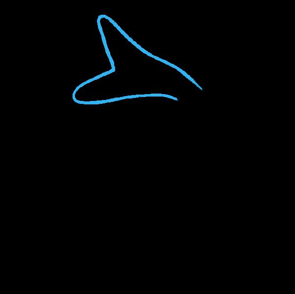 Vẽ đuôi cá
