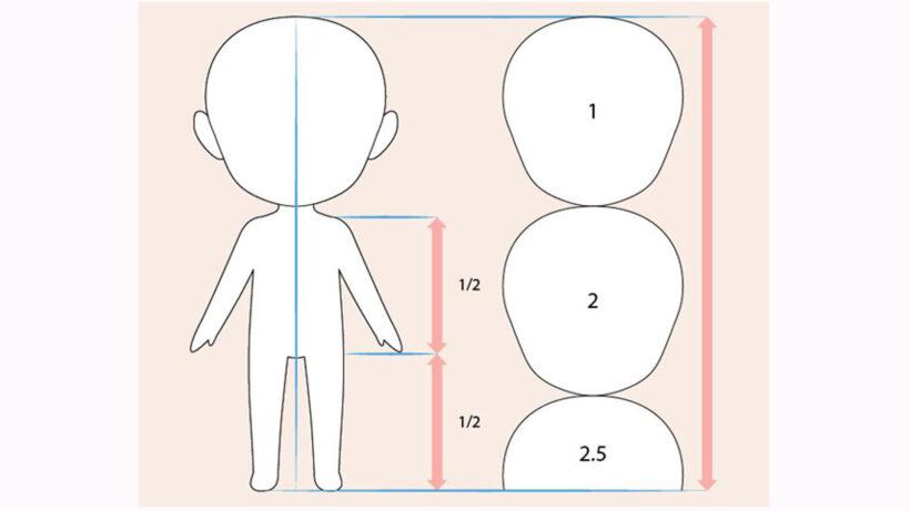 Vẽ phác hoạ toàn thân và xác định tỉ lệ cơ thể