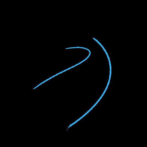 Vẽ thân cá