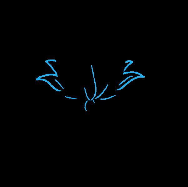 Vẽ thêm các cánh thấp hơn phía sau bông hoa