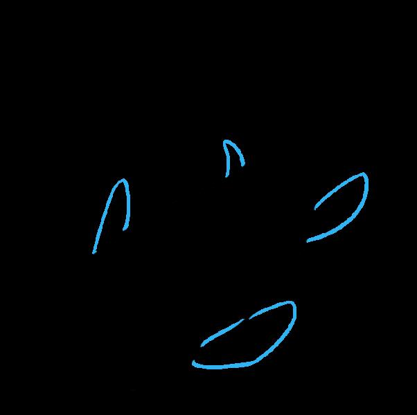 Vẽ vây hai bên thân cá