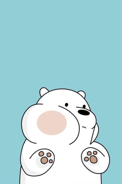 Hình ảnh con gấu hình nền gấu bắc cực