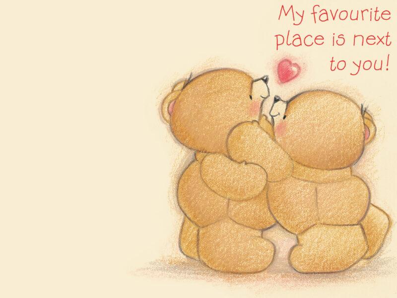 Hình ảnh con gấu hình nền gấu cho couple