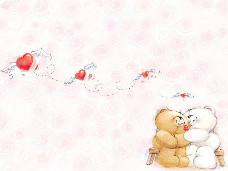 Hình ảnh con gấu hình nền gấu cute