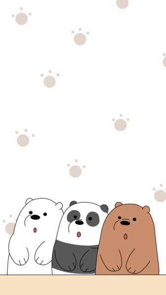 Hình ảnh con gấu hình nền gấu dễ thương