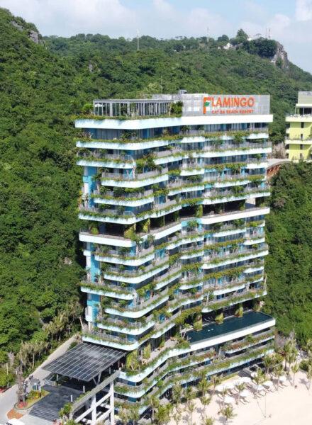 hình ảnh flamingo Cát Bà Resort đẹp