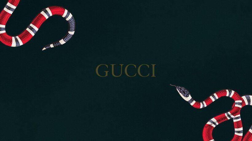 hình ảnh Gucci đẹp cho máy tính