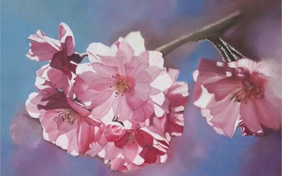 Hình vẽ hoa Anh Đào đẹp nhất
