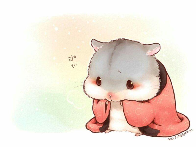 hình chuột Hamster chibi